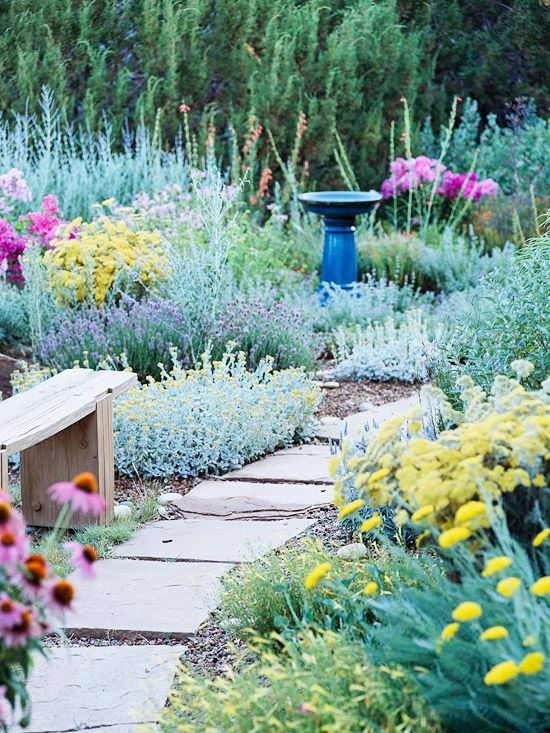 Drought Resistant Landscapes For The Sacramento Area Roseville Real Estate Rocklin Homes And
