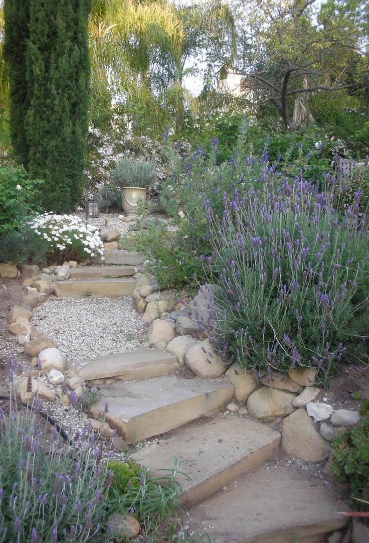Drought resistant landscapes for the sacramento area for Gartenidee hanglage