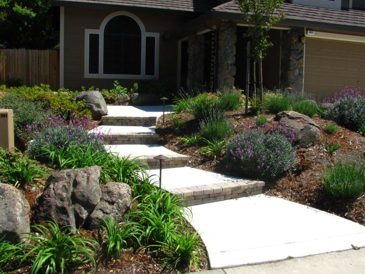 Drought resistant landscapes for the sacramento area for Ideas for low water landscapes