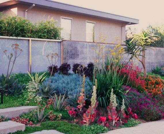 Drought Resistant Landscapes For The Sacramento Area