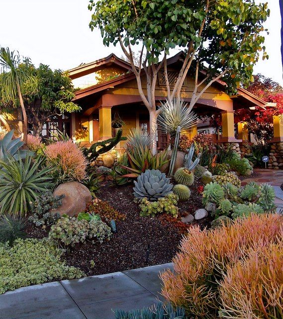 Drought Tolerant Front Yard: Drought Resistant Landscapes For The Sacramento Area